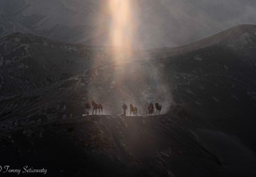 Bromo Ray of Light