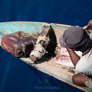 Two Fish by Ayda Sulianti